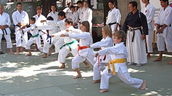 P-Shotokan01-590×332