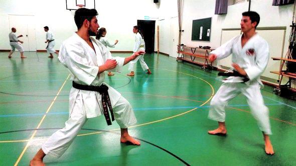 P-Shotokan02-590×332